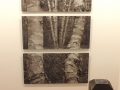Sepia Acrylic Prints