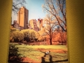 Acrylic Print: Park in City
