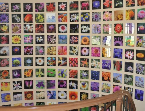 Acrylic wall prints creates mosaic