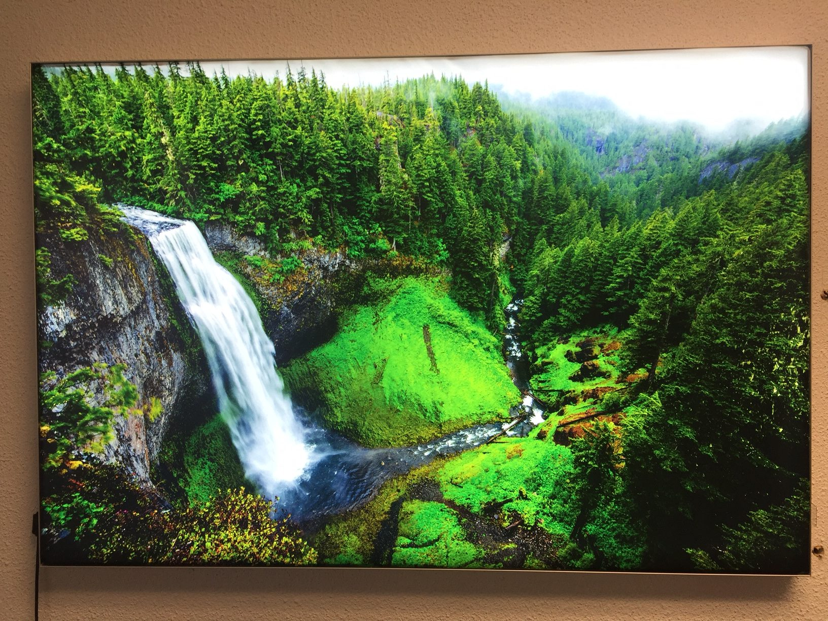 Canvas print of forest with waterfall.