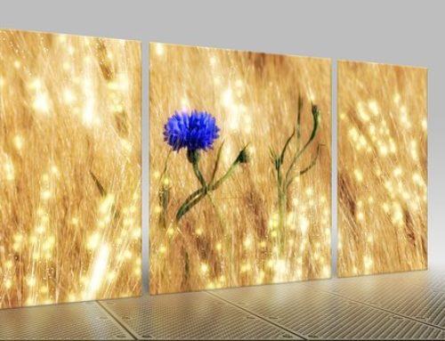 Create an Acrylic Triptych from your photos