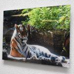 acrylic 3