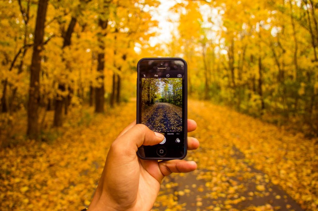 fall photography on an iphone