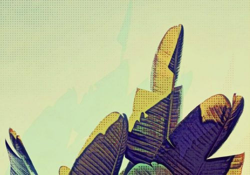 Pop-Art-Banana-Leaf