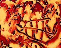 Abstract Acrylic Art Print: Astonia