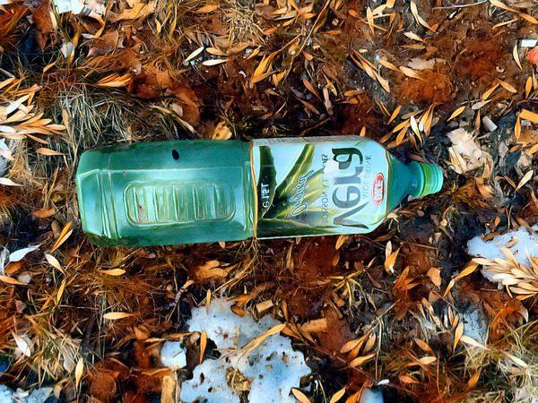 600_bigacrylic_backward_Autumn