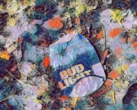 Abstract Acrylic Art Print: Busted Bud