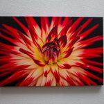 canvas_flower 1